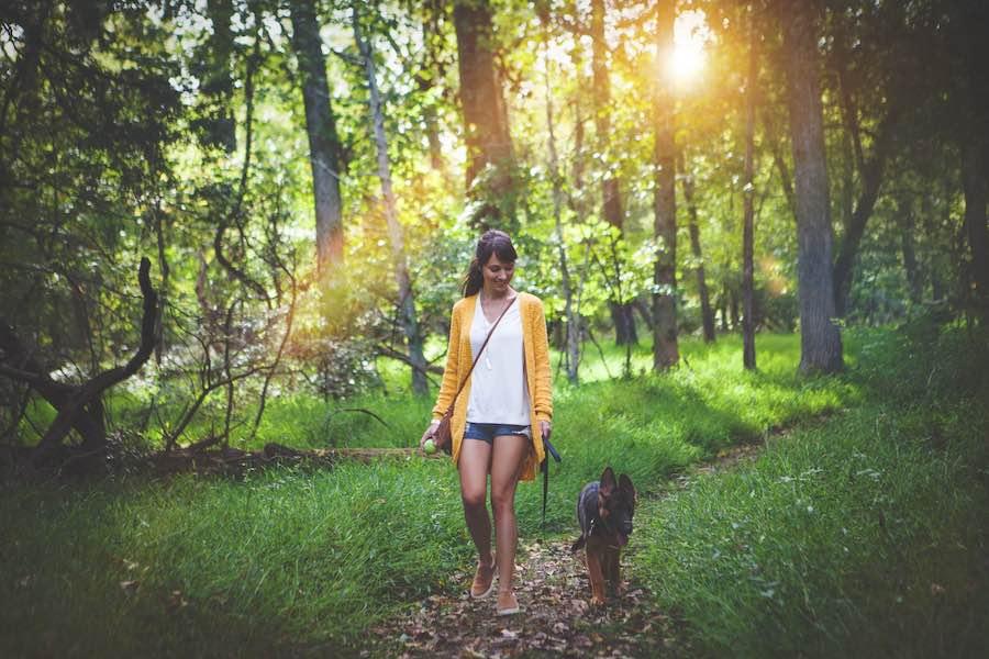 Frau und Hund entspannt im Wald
